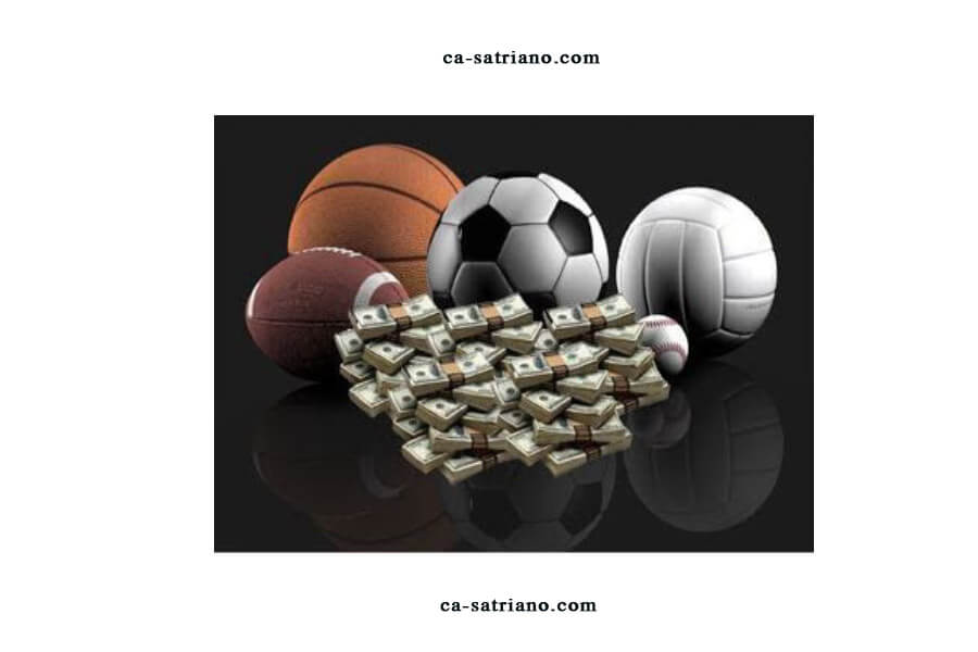 Discover How to Bet on Sports